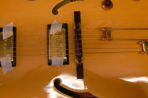 Replacement Pickup Guitar George